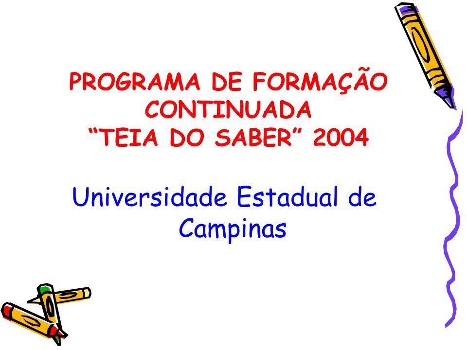 PROGRAMA DE FORMAÇÃO CONTINUADA TEIA DO SABER 2004
