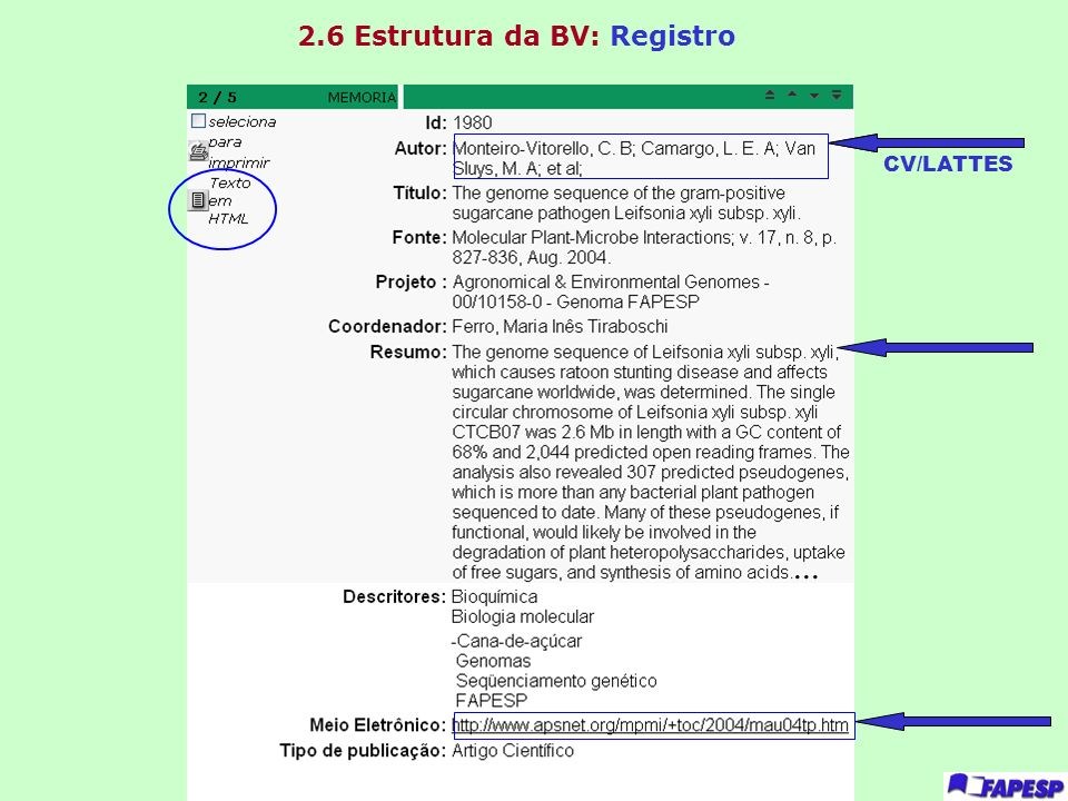 2.6 Estrutura da BV: Registro