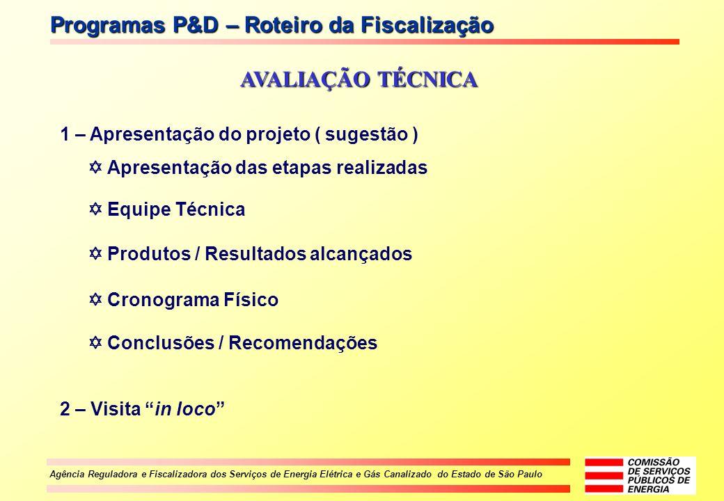 Programas P&D – Roteiro da Fiscalização