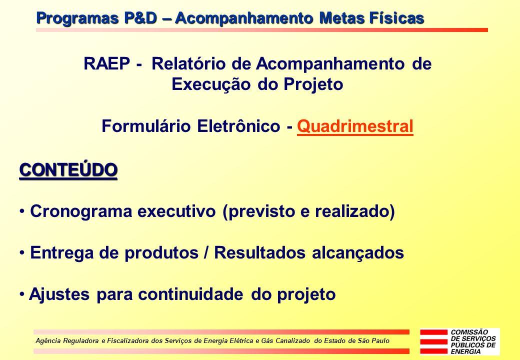 RAEP - Relatório de Acompanhamento de Execução do Projeto