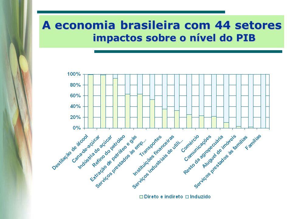 A economia brasileira com 44 setores impactos sobre o nível do PIB