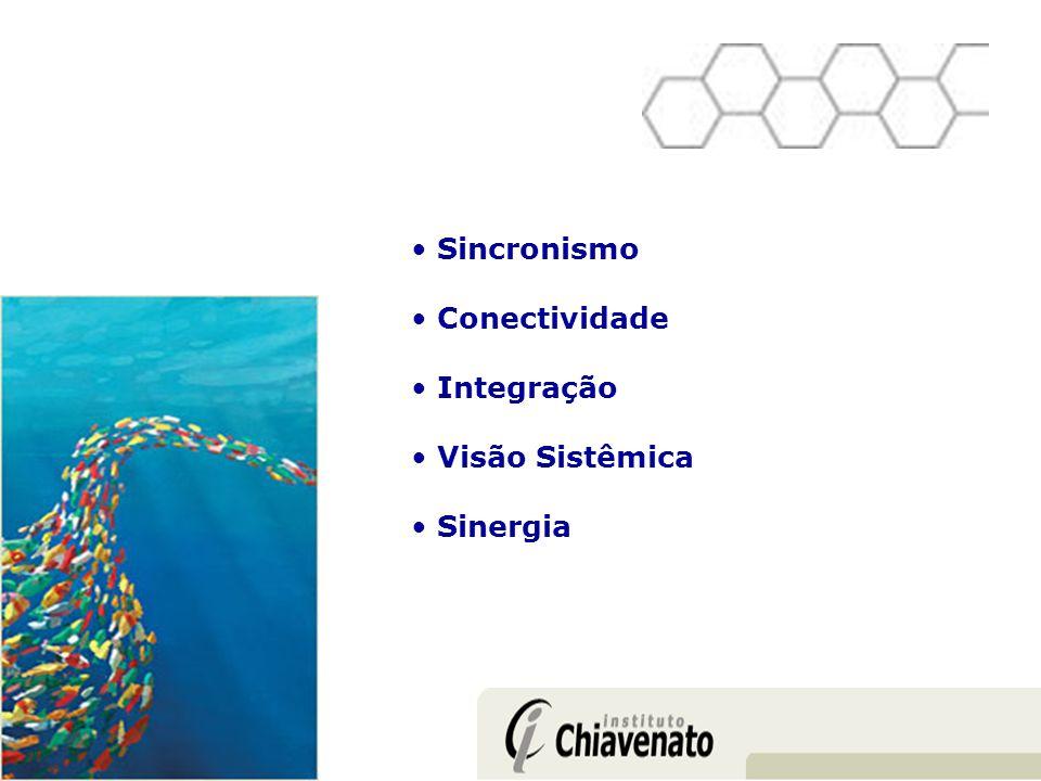 Sincronismo Conectividade Integração Visão Sistêmica Sinergia