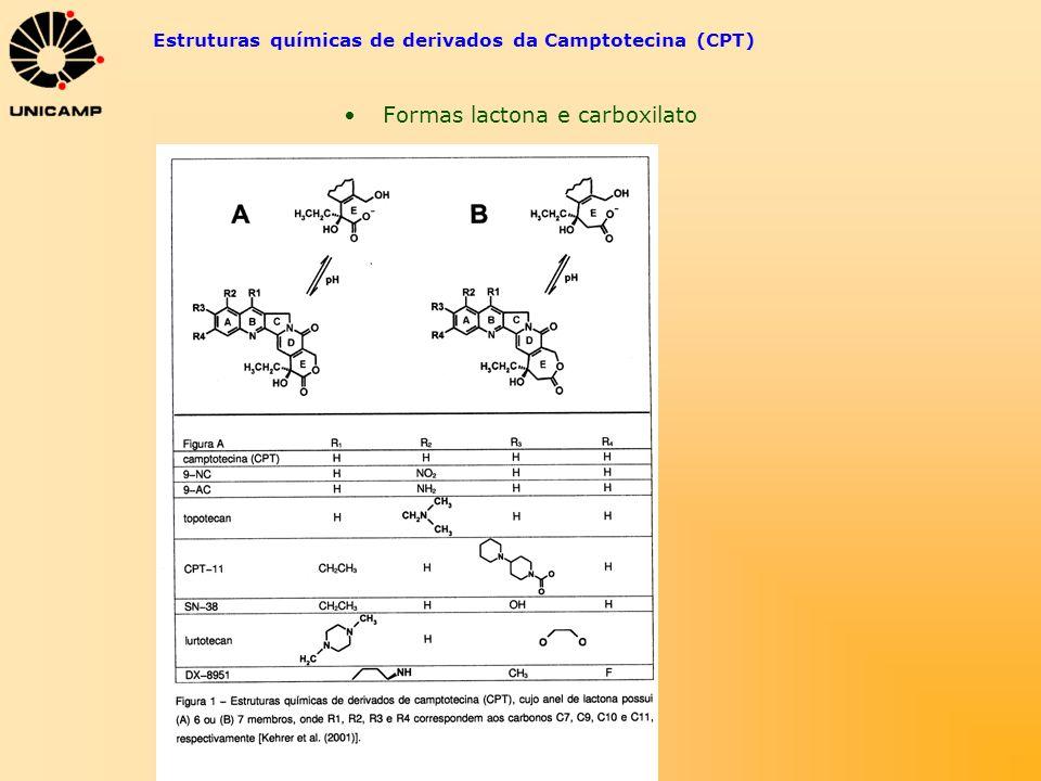Estruturas químicas de derivados da Camptotecina (CPT)