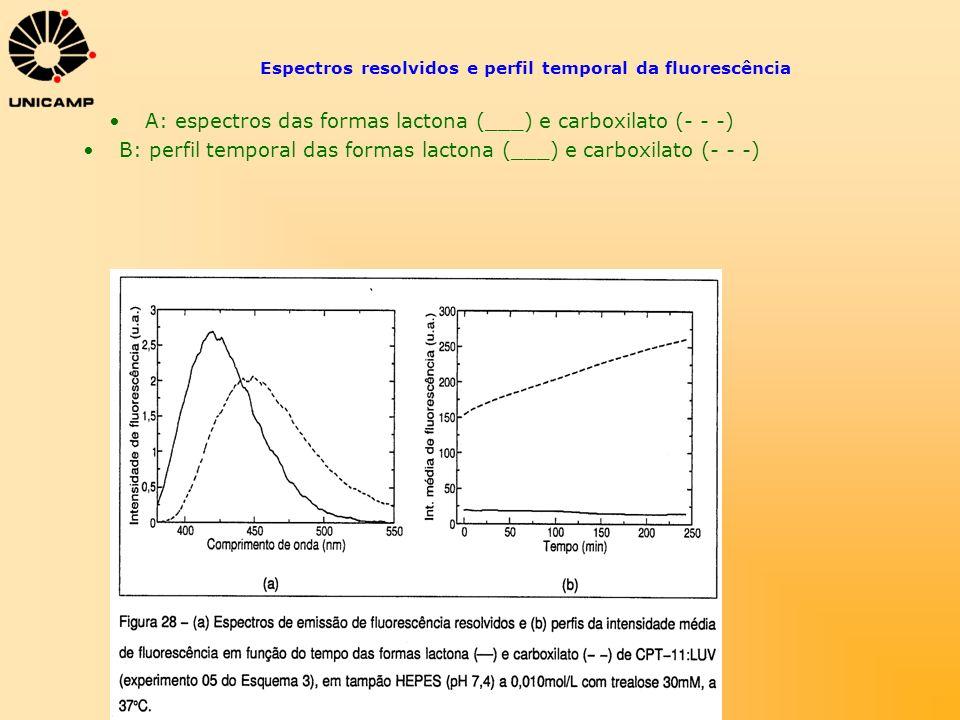 Espectros resolvidos e perfil temporal da fluorescência