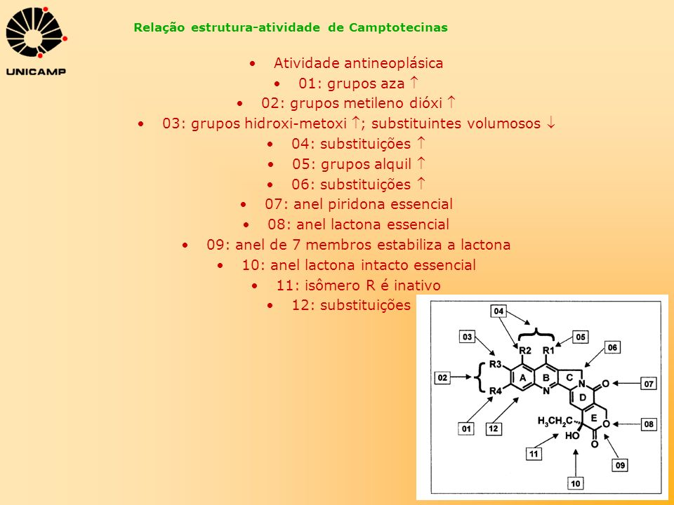 Relação estrutura-atividade de Camptotecinas