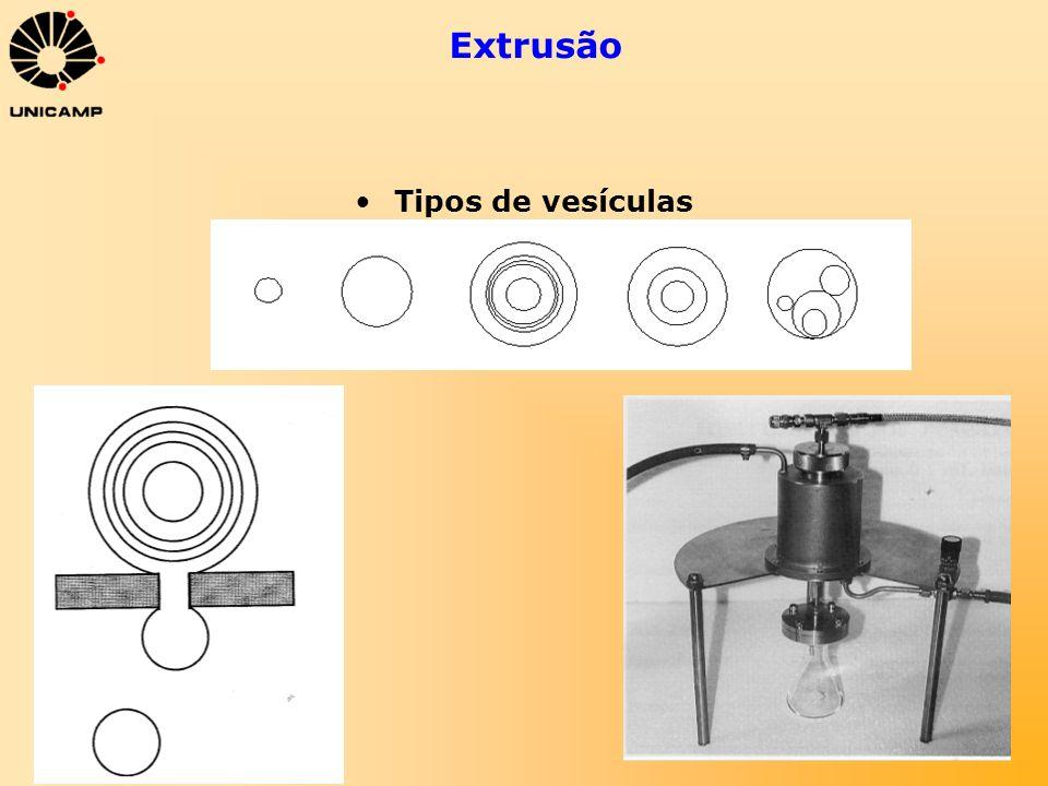 Extrusão Tipos de vesículas