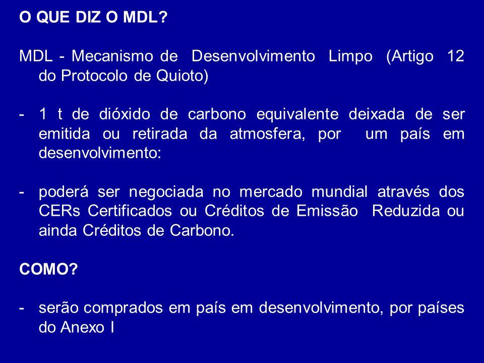 O QUE DIZ O MDL MDL - Mecanismo de Desenvolvimento Limpo (Artigo 12 do Protocolo de Quioto)