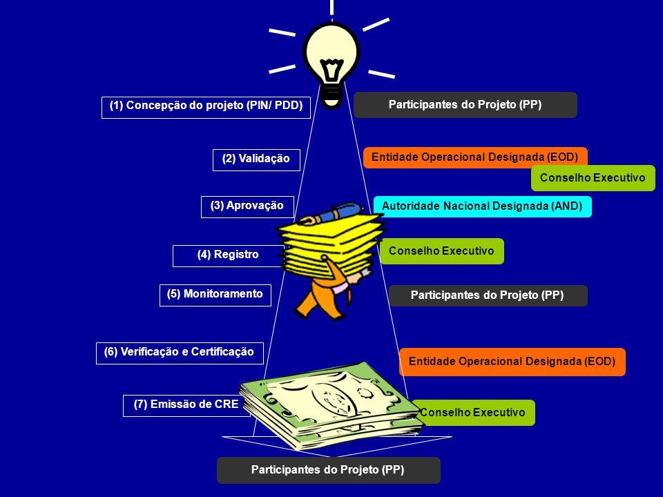 Participantes do Projeto (PP) (1) Concepção do projeto (PIN/ PDD)