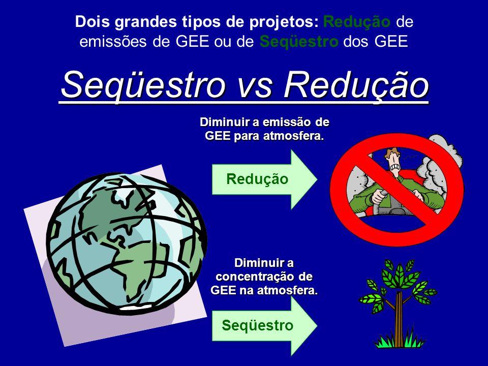 Seqüestro vs Redução Dois grandes tipos de projetos: Redução de