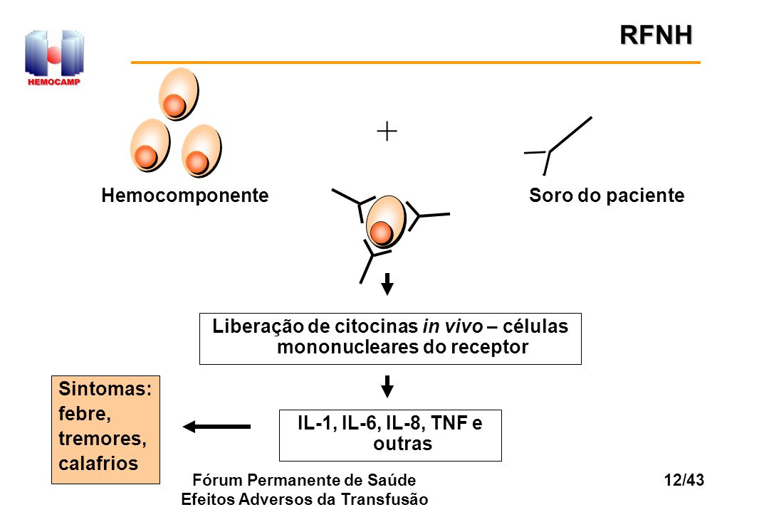 + RFNH Hemocomponente Soro do paciente