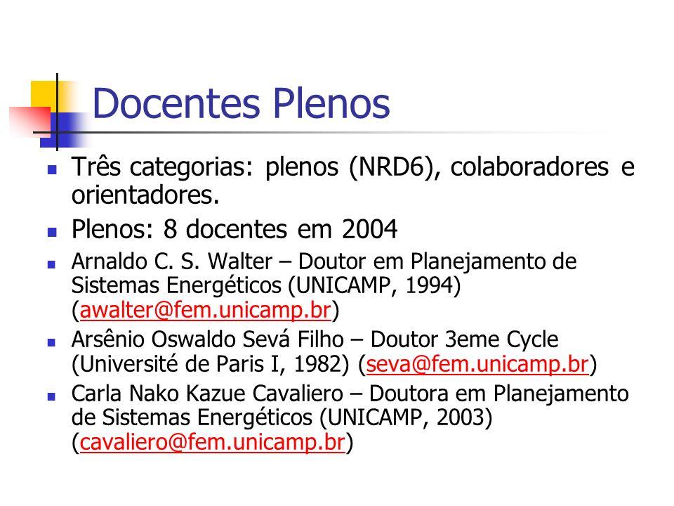 Docentes Plenos Três categorias: plenos (NRD6), colaboradores e orientadores. Plenos: 8 docentes em 2004.