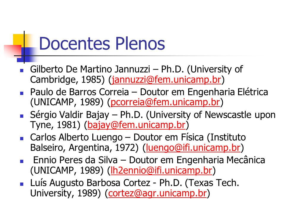 Docentes Plenos Gilberto De Martino Jannuzzi – Ph.D. (University of Cambridge, 1985) (jannuzzi@fem.unicamp.br)