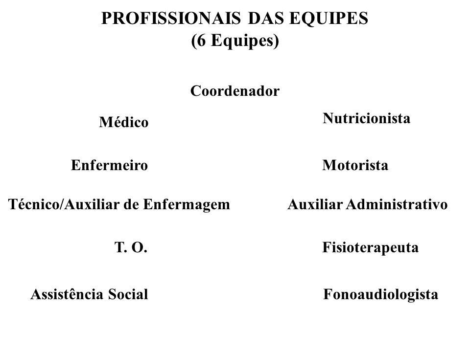 PROFISSIONAIS DAS EQUIPES (6 Equipes)