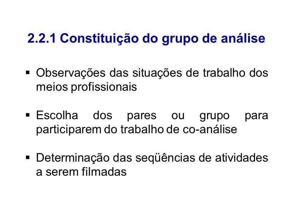 2.2.1 Constituição do grupo de análise
