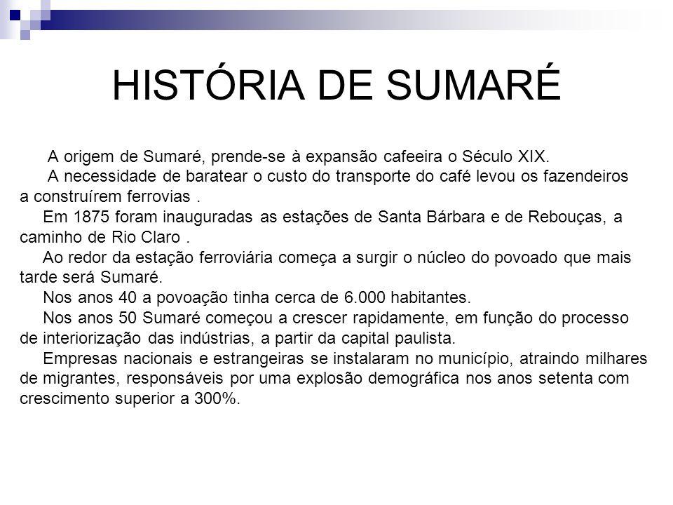 HISTÓRIA DE SUMARÉ A origem de Sumaré, prende-se à expansão cafeeira o Século XIX.