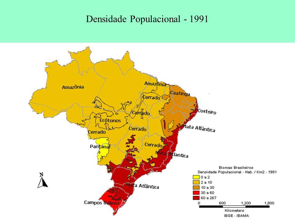 Densidade Populacional - 1991