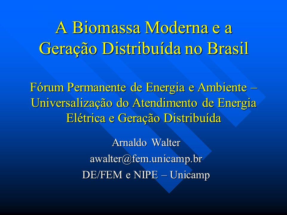 Arnaldo Walter awalter@fem.unicamp.br DE/FEM e NIPE – Unicamp
