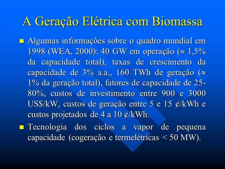 A Geração Elétrica com Biomassa