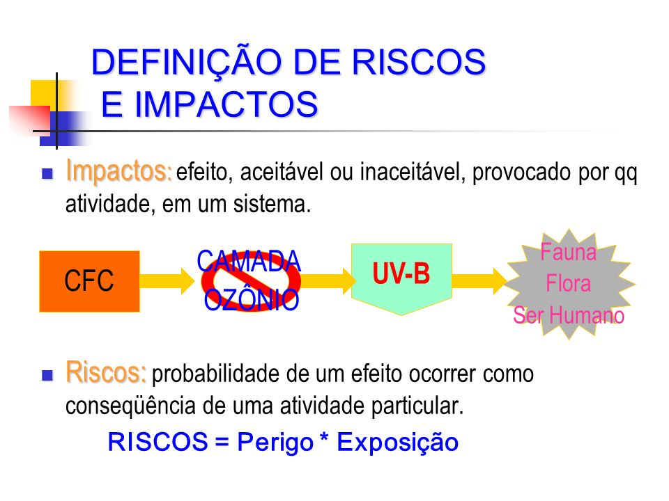 DEFINIÇÃO DE RISCOS E IMPACTOS