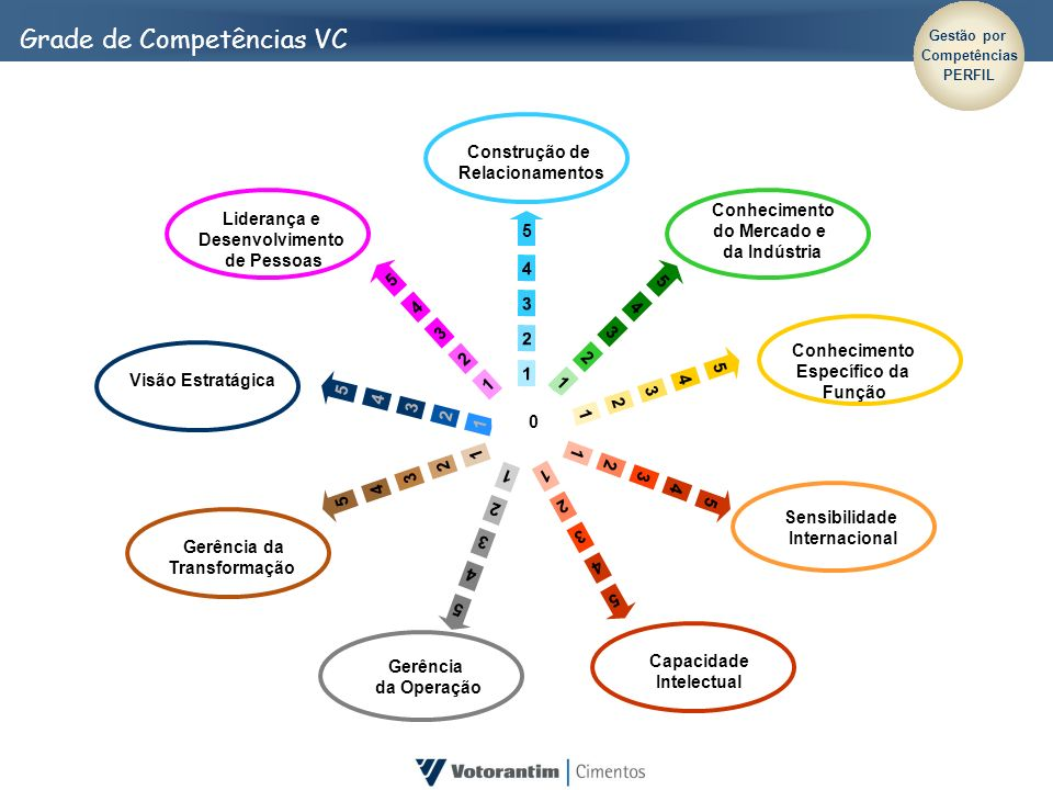 Grade de Competências VC