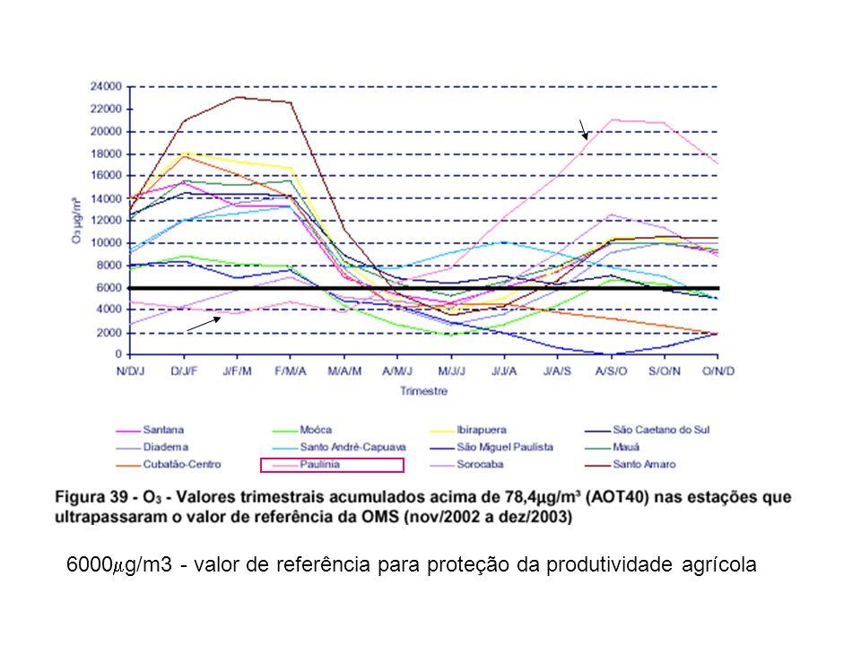 6000g/m3 - valor de referência para proteção da produtividade agrícola