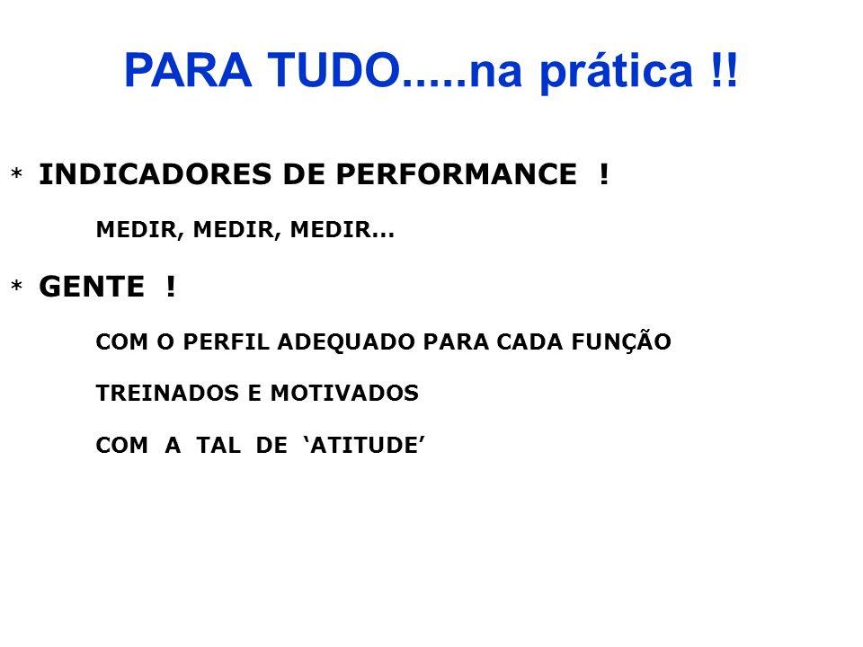 PARA TUDO.....na prática !! * INDICADORES DE PERFORMANCE !