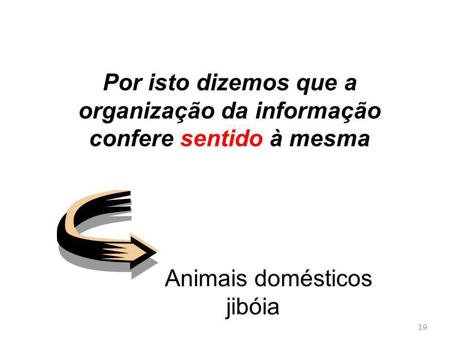 Por isto dizemos que a organização da informação confere sentido à mesma Animais domésticos jibóia