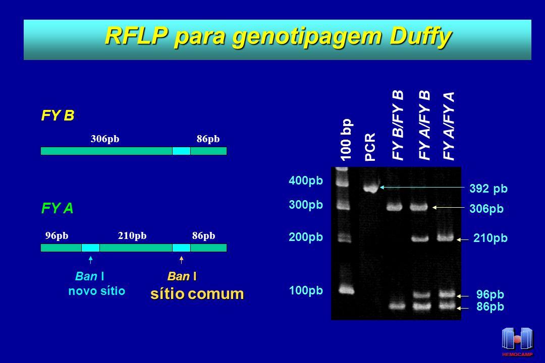 RFLP para genotipagem Duffy