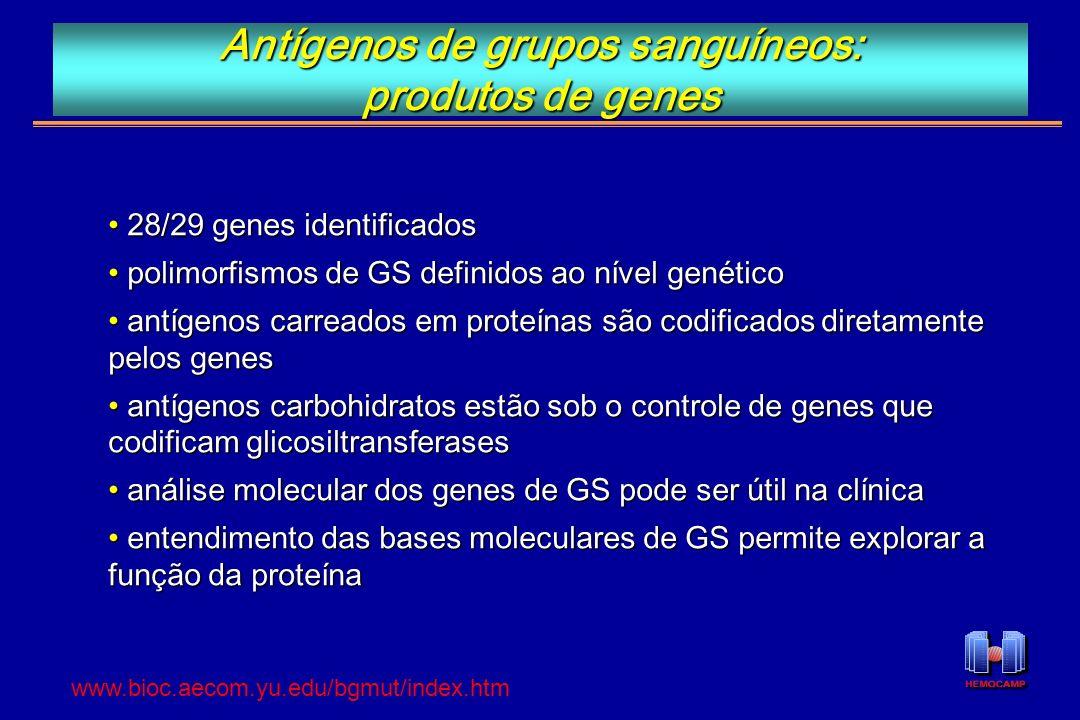 Antígenos de grupos sanguíneos: