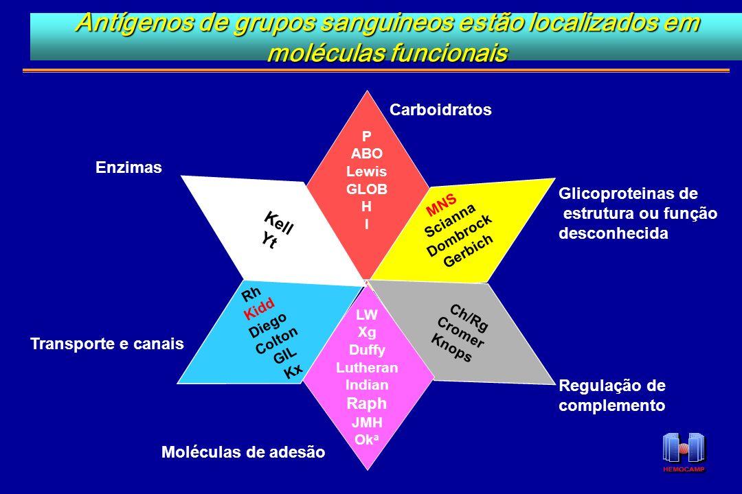 Antígenos de grupos sanguineos estão localizados em moléculas funcionais