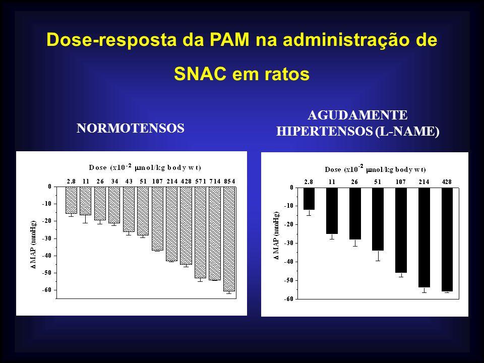 Dose-resposta da PAM na administração de SNAC em ratos