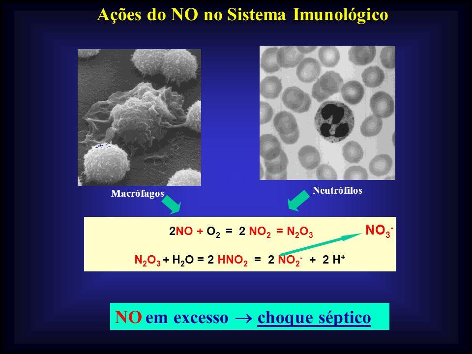Ações do NO no Sistema Imunológico