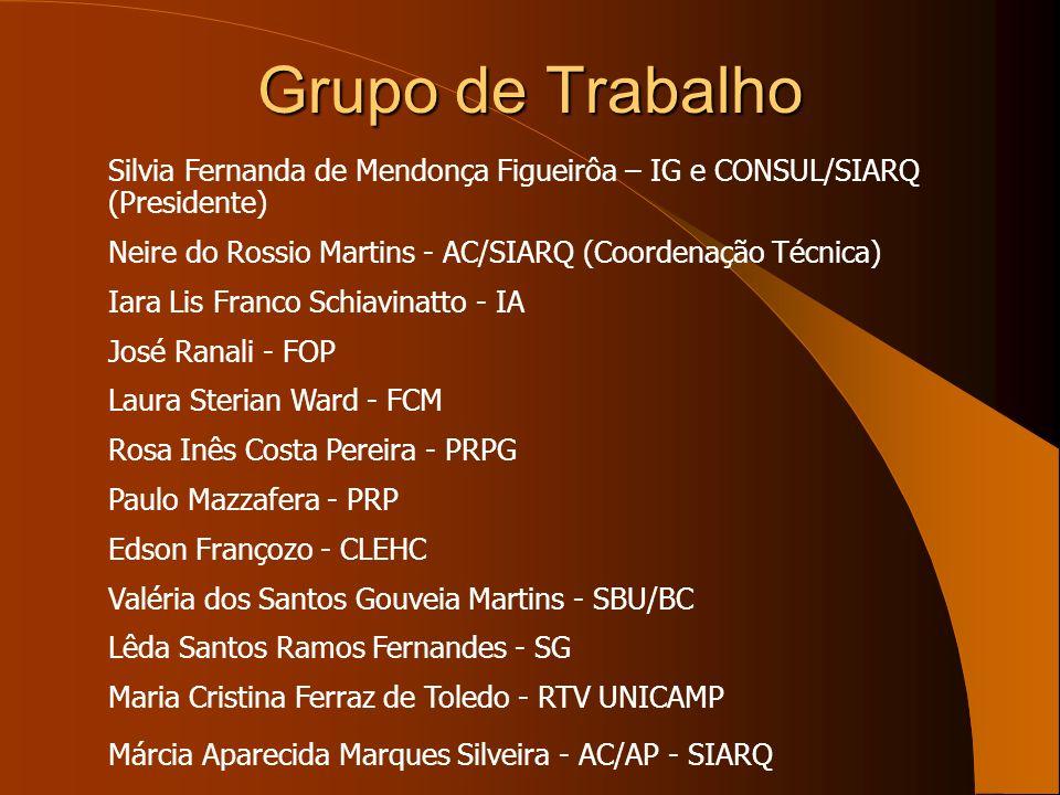 Grupo de TrabalhoSilvia Fernanda de Mendonça Figueirôa – IG e CONSUL/SIARQ (Presidente) Neire do Rossio Martins - AC/SIARQ (Coordenação Técnica)