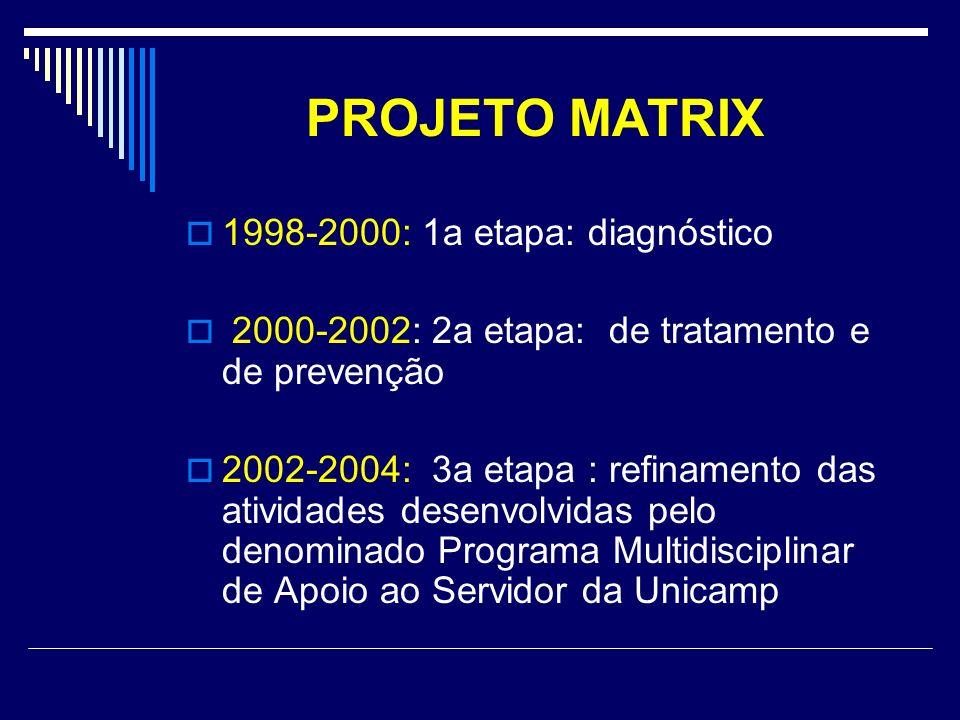 PROJETO MATRIX 1998-2000: 1a etapa: diagnóstico