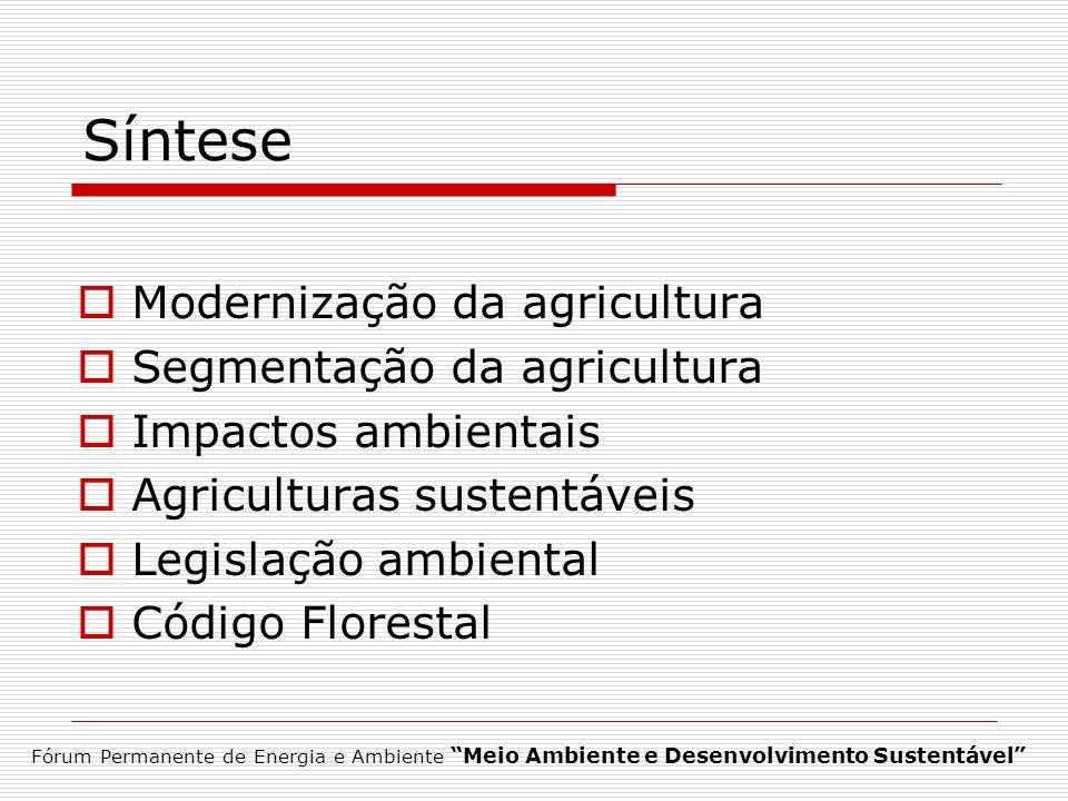 Síntese Modernização da agricultura Segmentação da agricultura