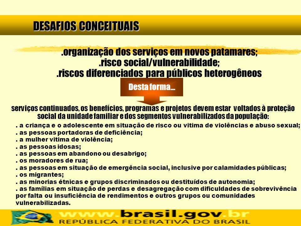 DESAFIOS CONCEITUAIS .organização dos serviços em novos patamares; .risco social/vulnerabilidade; .riscos diferenciados para públicos heterogêneos.