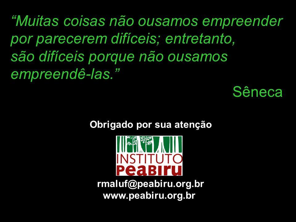 Obrigado por sua atenção rmaluf@peabiru.org.br www.peabiru.org.br