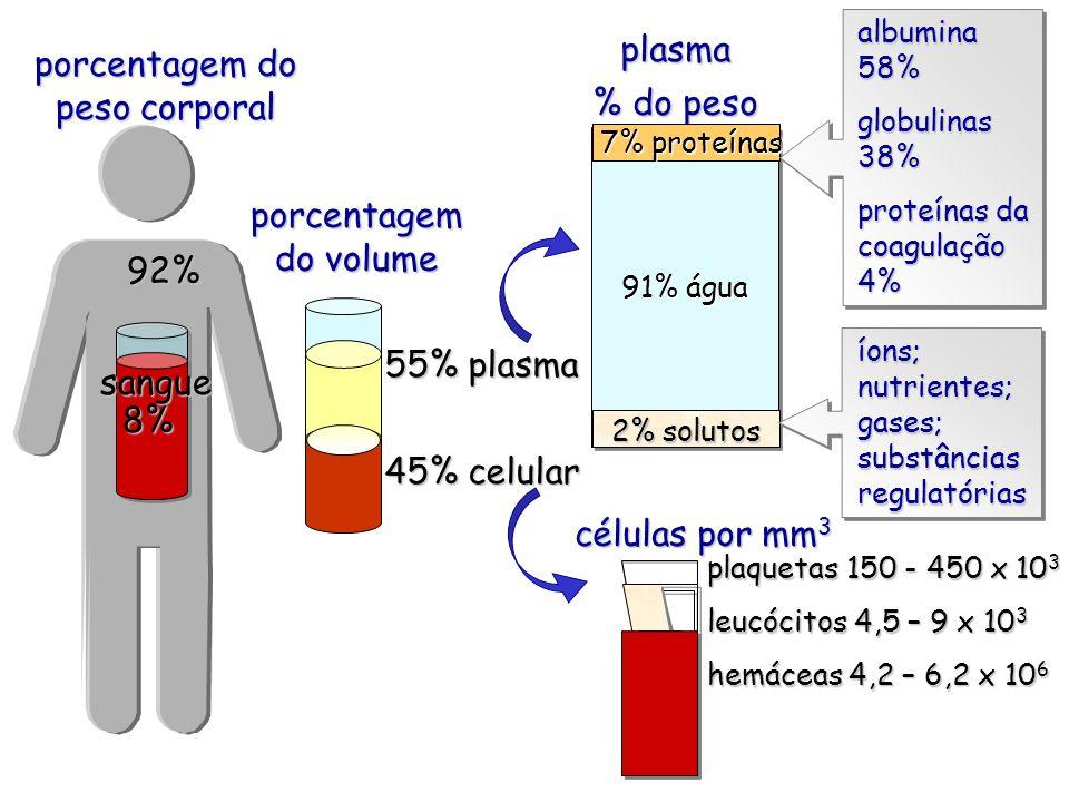 porcentagem do peso corporal