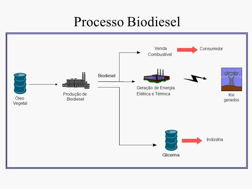Processo Biodiesel Glicerina Biodiesel Produção de Óleo Vegetal Kw