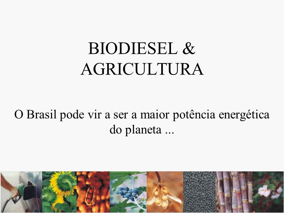 BIODIESEL & AGRICULTURA