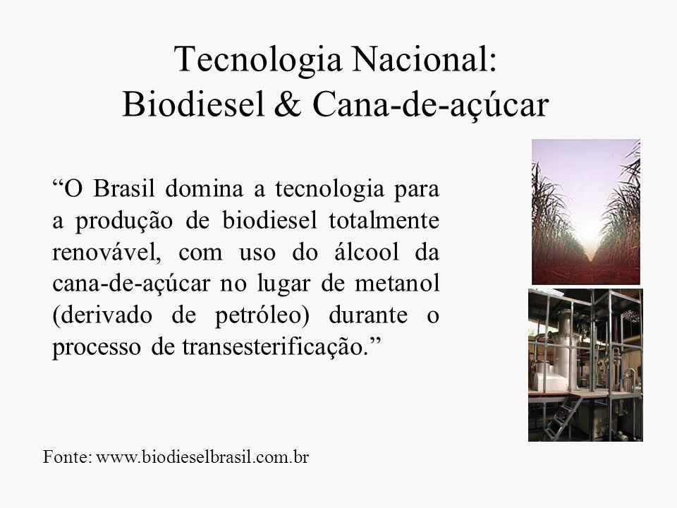 Tecnologia Nacional: Biodiesel & Cana-de-açúcar