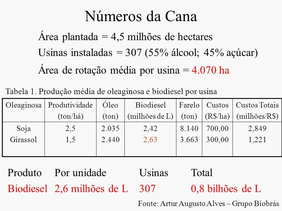 Números da Cana Área plantada = 4,5 milhões de hectares