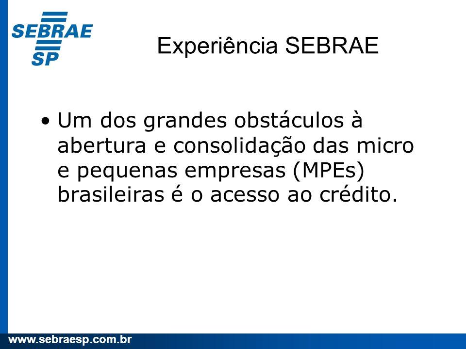 Experiência SEBRAE Um dos grandes obstáculos à abertura e consolidação das micro e pequenas empresas (MPEs) brasileiras é o acesso ao crédito.