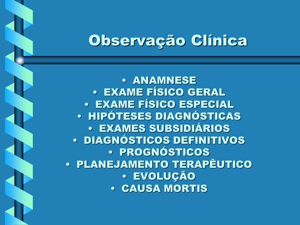 Observação Clínica ANAMNESE EXAME FÍSICO GERAL EXAME FÍSICO ESPECIAL