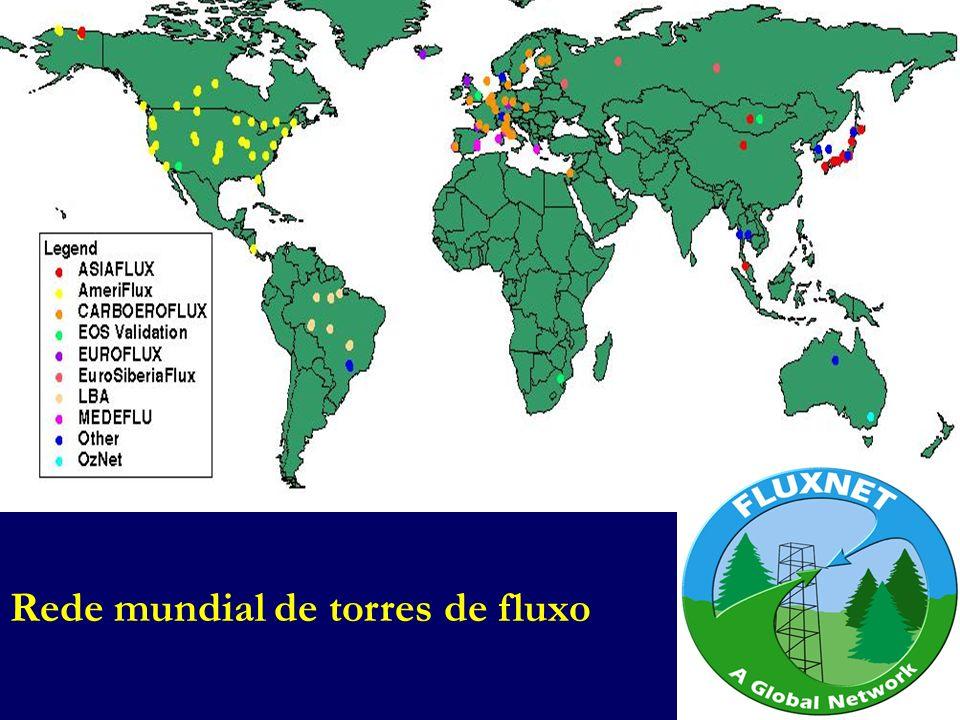 Rede mundial de torres de fluxo