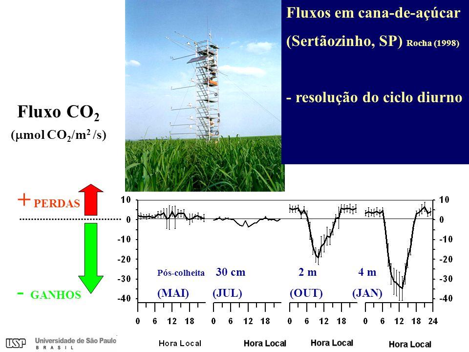 + PERDAS - GANHOS Fluxo CO2 Fluxos em cana-de-açúcar