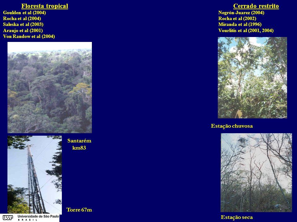 Floresta tropical Cerrado restrito