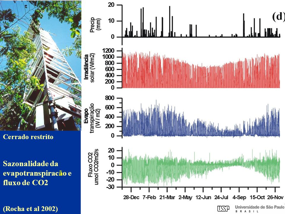 Sazonalidade da evapotranspiracão e fluxo de CO2