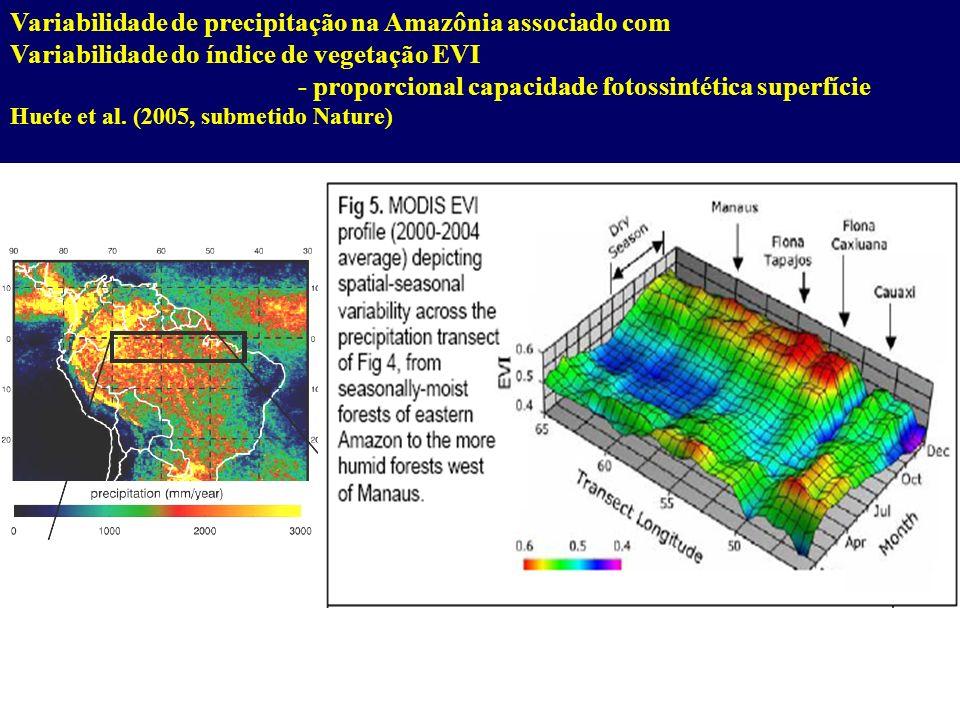 Variabilidade de precipitação na Amazônia associado com