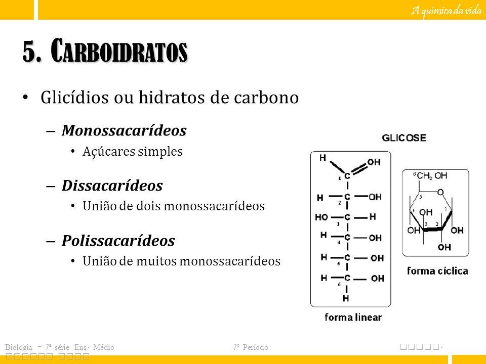 5. Carboidratos Glicídios ou hidratos de carbono Monossacarídeos